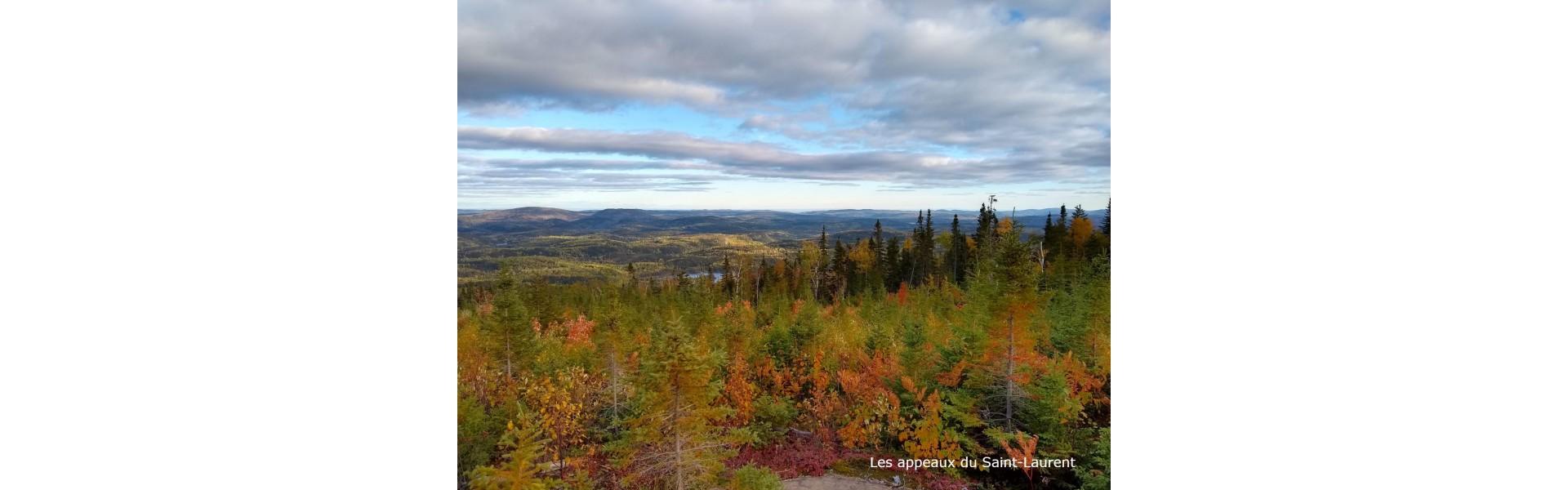 Paysage Saguenay